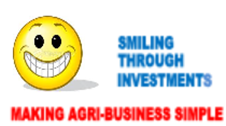 Smiling Through Investments  (Pty) Ltd